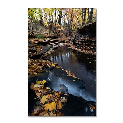 Trademark Kurt Shaffer Autumn Stream Gallery-Wrapped Canvas Art, 30 x 47