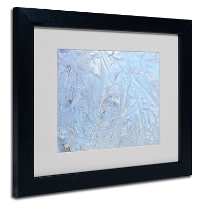 Trademark Kurt Shaffer Frost Pattern #3 Art, White Matte With Black Frame, 11 x 14