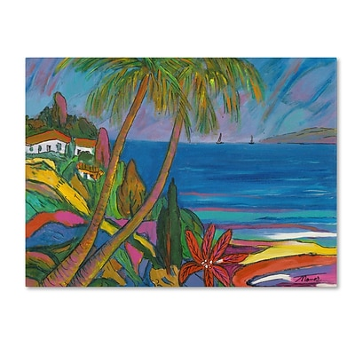 Trademark Manor Shadian Blue Sea with 2 Boats Gallery-Wrapped Canvas Art, 24 x 32