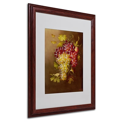 Trademark Rio Still Life with Grapes Art, White Matte With Wood Frame, 16 x 20