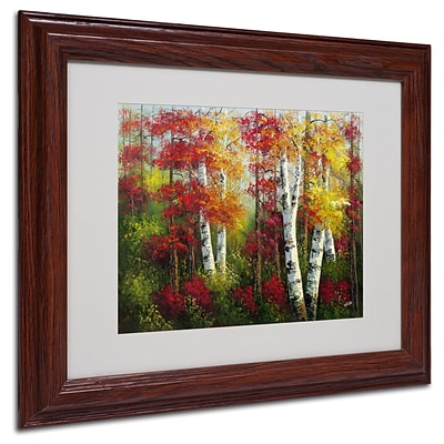 Trademark Rio Indian Summer Art, White Matte With Wood Frame, 11 x 14