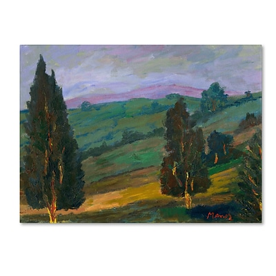 Trademark Manor Shadian Evergreens on a Green Slope Gallery-Wrapped Canvas Art, 18 x 24