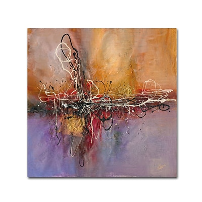 Trademark Ricardo Tapia Inspired Gallery-Wrapped Canvas Art, 14 x 14