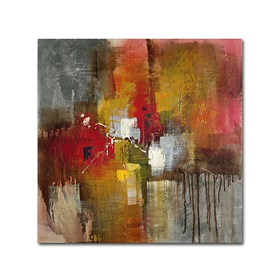 Trademark Ricardo Tapia Certain Gallery-Wrapped Canvas Art, 18 x 18