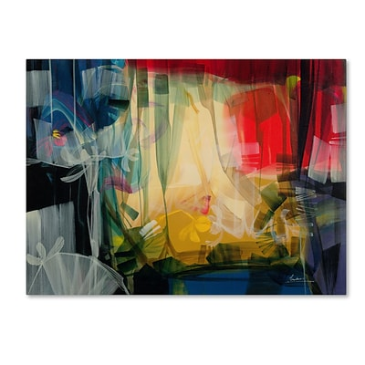 Trademark Andrea Amhaus Gallery-Wrapped Canvas Art, 24 x 32