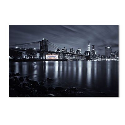 Trademark David Ayash Janes Carousel, Brooklyn Bridge Gallery-Wrapped Canvas Art, 22 x 32