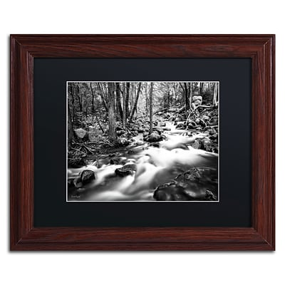 Trademark David Ayash Yosemite...California-I Art, Black Matte With Wood Frame, 11 x 14