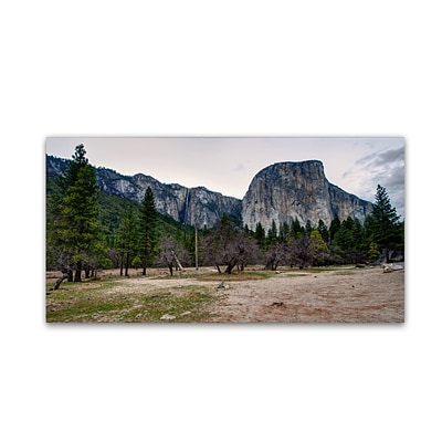 Trademark David Ayash Yosemite National Park - California-II Gallery-Wrapped Canvas Art, 12 x 24