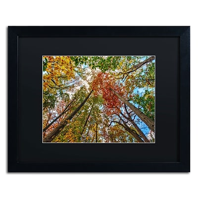 Trademark David Ayash New York Fall-I Art, Black Matte With Black Frame, 16 x 20