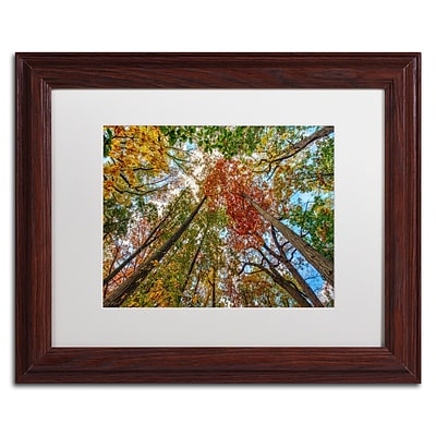 Trademark David Ayash New York Fall-I Art, White Matte With Wood Frame, 11 x 14