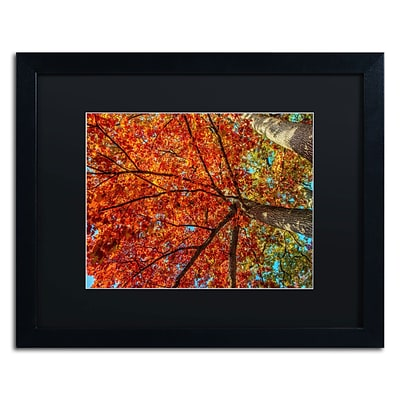 Trademark David Ayash New York Fall-II Art, Black Matte With Black Frame, 16 x 20