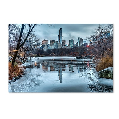 Trademark David Ayash Frozen Central Park Lake I Gallery-Wrapped Canvas Art, 12 x 19