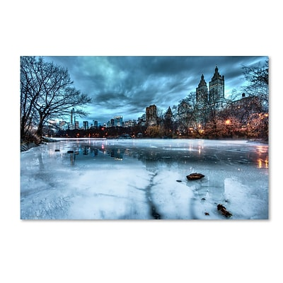 Trademark David Ayash Frozen Central Park Lake II Gallery-Wrapped Canvas Art, 12 x 19