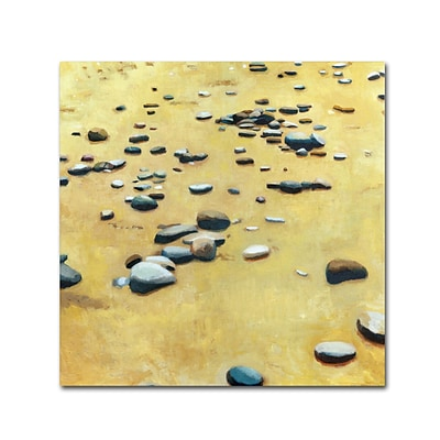 Trademark Michelle Calkins Pebbles on the Beach Gallery-Wrapped Canvas Art, 14 x 14