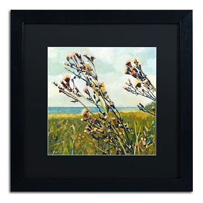 Trademark Michelle Calkins Thistles on the Beach Art, Black Matte With Black Frame, 16 x 16