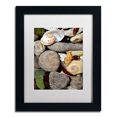 Trademark Michelle Calkins Petoskey Stones ll Art, White Matte With Black Frame, 11 x 14