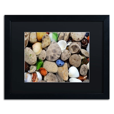 Trademark Michelle Calkins Petoskey Stones lll Art, Black Matte With Black Frame, 16 x 20
