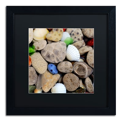 Trademark Michelle Calkins Petoskey Stones V Art, Black Matte With Black Frame, 16 x 16