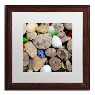 Trademark Michelle Calkins Petoskey Stones V Art, White Matte With Wood Frame, 16 x 16