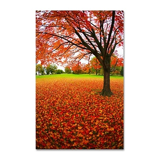 Trademark CATeyes Autumn Expressions Gallery-Wrapped Canvas Art, 30 x 47