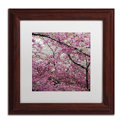 Trademark CATeyes Cherry Blossoms 2014-3 Art, White Matte W/Wood Frame, 11 x 11
