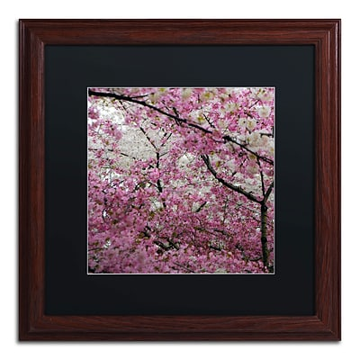 Trademark CATeyes Cherry Blossoms 2014-3 Art, Black Matte W/Wood Frame, 16 x 16