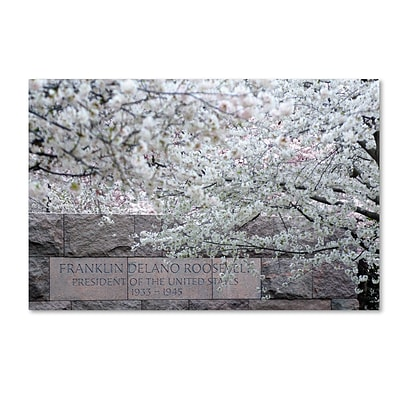 Trademark CATeyes Cherry Blossoms 2014-4 Gallery-Wrapped Canvas Art, 30 x 47