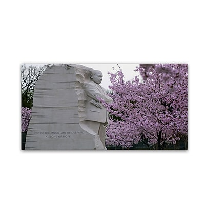 Trademark CATeyes Cherry Blossoms 2014-5 Gallery-Wrapped Canvas Art, 16 x 32
