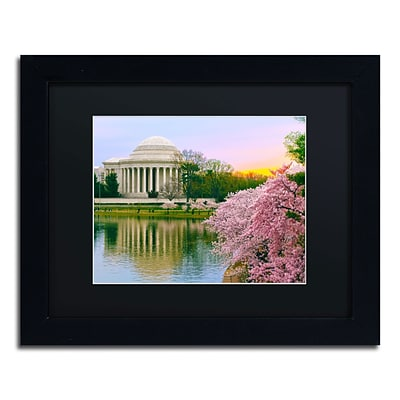 Trademark CATeyes Cherry Blossoms 2014-6 Art, Black Matte W/Black Frame, 11 x 14