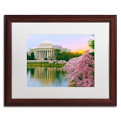 Trademark CATeyes Cherry Blossoms 2014-6 Art, White Matte W/Wood Frame, 16 x 20