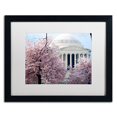 Trademark CATeyes Cherry Blossoms 2014-7 Art, White Matte W/Black Frame, 16 x 20