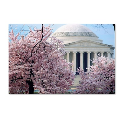 Trademark CATeyes Cherry Blossoms 2014-7 Gallery-Wrapped Canvas Art, 22 x 32