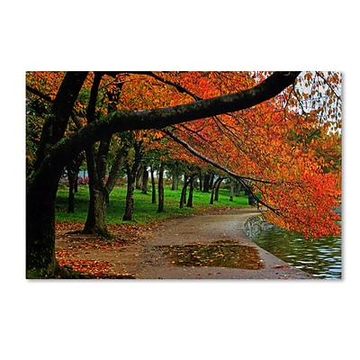 Trademark CATeyes Tidal Basin Autumn 2 Gallery-Wrapped Canvas Art, 30 x 47