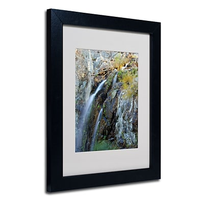 Trademark CATeyes Flows Art, White Matte W/Black Frame, 11 x 14