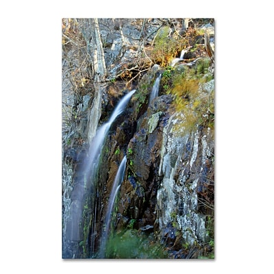 Trademark CATeyes Flows Gallery-Wrapped Canvas Art, 30 x 47