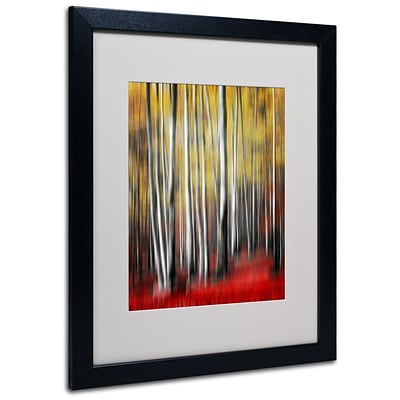Trademark Philippe Sainte-Laudy Osmosis Art, White Matte With Black Frame, 16 x 20