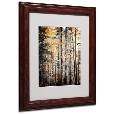 Trademark Philippe Sainte-Laudy Autumn Tones Art, White Matte With Wood Frame, 11 x 14