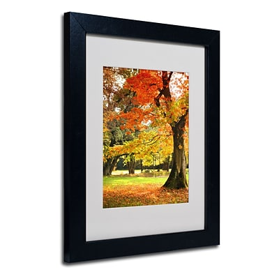 Trademark Philippe Sainte-Laudy Dance of Colors Art, White Matte With Black Frame, 11 x 14