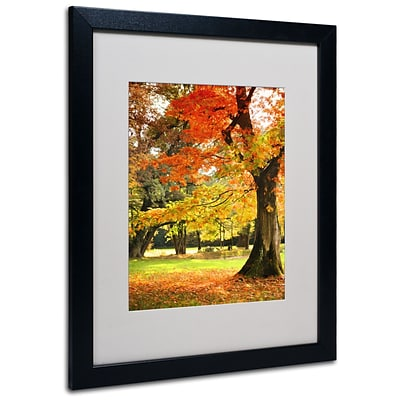 Trademark Philippe Sainte-Laudy Dance of Colors Art, White Matte With Black Frame, 16 x 20