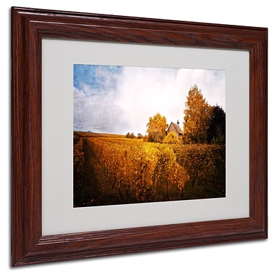 Trademark Philippe Sainte-Laudy Light in Vineyards Art, White Matte With Wood Frame, 11 x 14