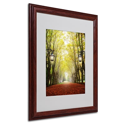 Trademark Philippe Sainte-Laudy Plane Tree Alley Art, White Matte With Wood Frame, 16 x 20