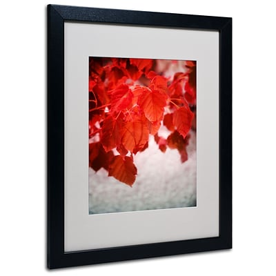 Trademark Philippe Sainte-Laudy Red is On Art, White Matte With Black Frame, 16 x 20