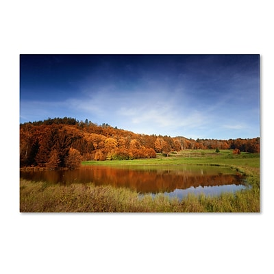 Trademark Philippe Sainte-Laudy Vosges Fall Gallery-Wrapped Canvas Art, 12 x 19