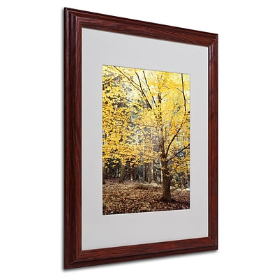 Trademark Philippe Sainte-Laudy Yellow Fall Art, White Matte With Wood Frame, 16 x 20