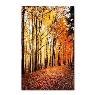 Trademark Philippe Sainte-Laudy Yellow Moment Gallery-Wrapped Canvas Art, 22 x 32