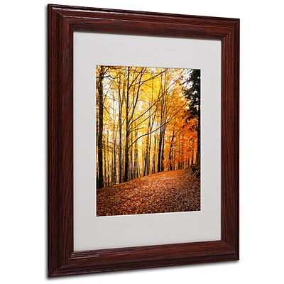 Trademark Philippe Sainte-Laudy Yellow Moment Art, White Matte With Wood Frame, 11 x 14