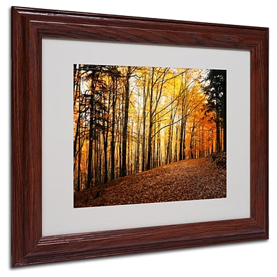 Trademark Philippe Sainte-Laudy Autumn Leaves Art, White Matte With Wood Frame, 11 x 14