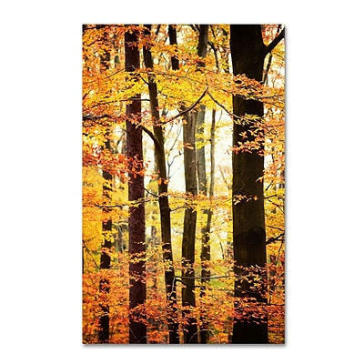 Trademark Philippe Sainte-Laudy Between Us Gallery-Wrapped Canvas Art, 22 x 32