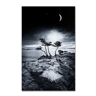 Trademark Philippe Sainte-Laudy Emotional High Gallery-Wrapped Canvas Art, 22 x 32