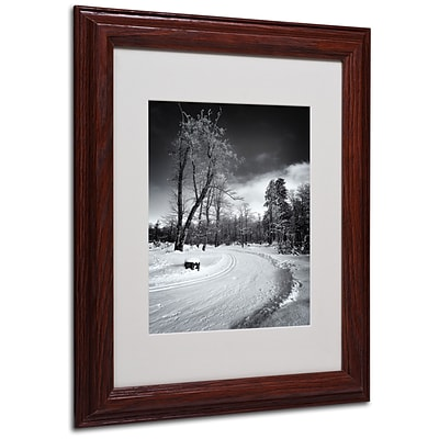 Trademark Philippe Sainte-Laudy Path to Exile Art, White Matte With Wood Frame, 11 x 14